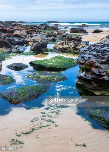 Rock Pools, Cornwall
