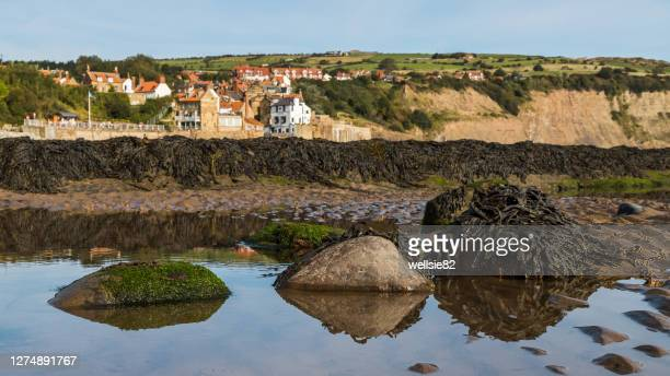 rock pools in robin hoods bay - bay of water stock pictures, royalty-free photos & images