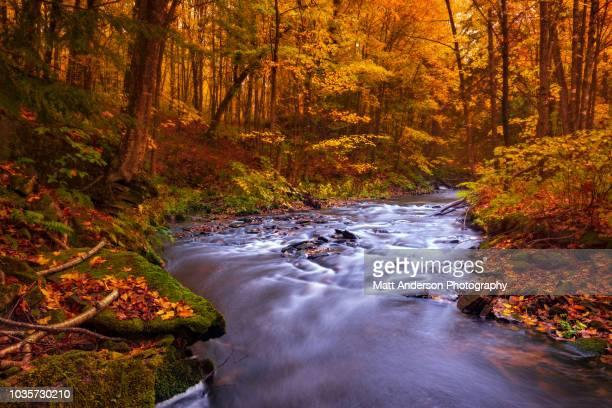 rock river cascades in fall - parque estatal de porcupine mountains wilderness fotografías e imágenes de stock