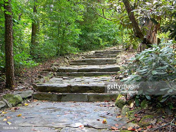 rock stairs through woods - greenville south carolina stock photos and pictures