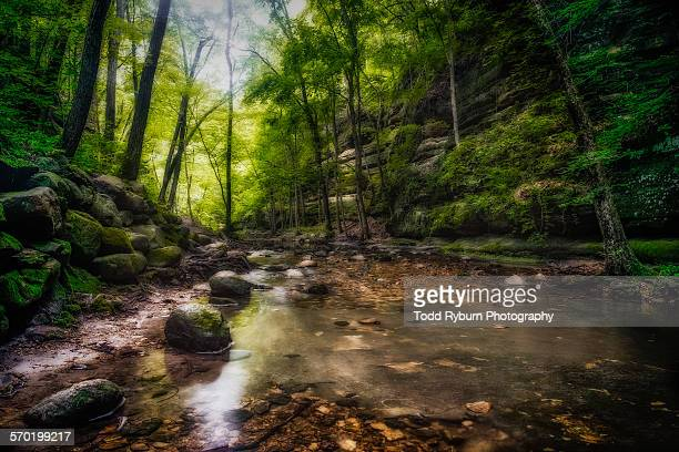 rock stream - state park stock pictures, royalty-free photos & images