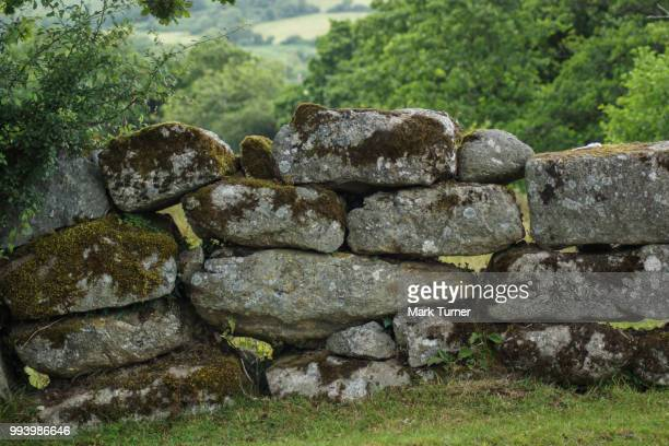 rock wall - stone wall stock pictures, royalty-free photos & images