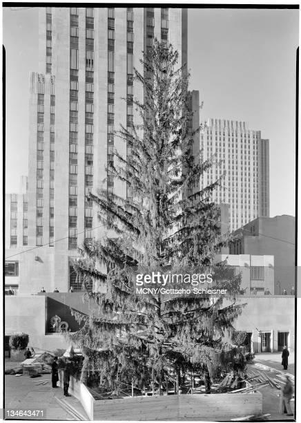 Rockefeller Center Inc 20 Rockefeller Plaza Christmas tree in Plaza from steps