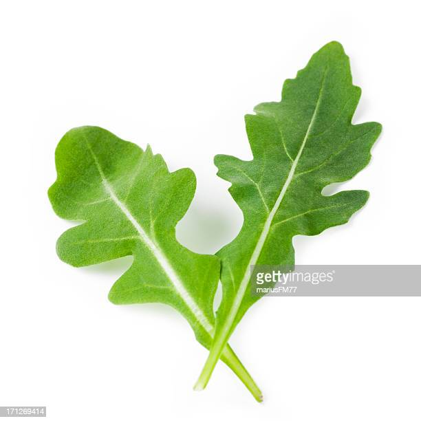 rocket - arugula stock pictures, royalty-free photos & images
