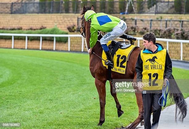 Rocketeer throws off jockey Michael Dee before Quest Moonee Valley Handicap at Moonee Valley Racecourse on September 03 2016 in Moonee Ponds Australia