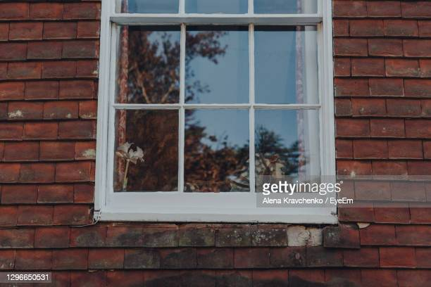 rocking horse by the window of a house in rye, east sussex, uk. - window stock pictures, royalty-free photos & images