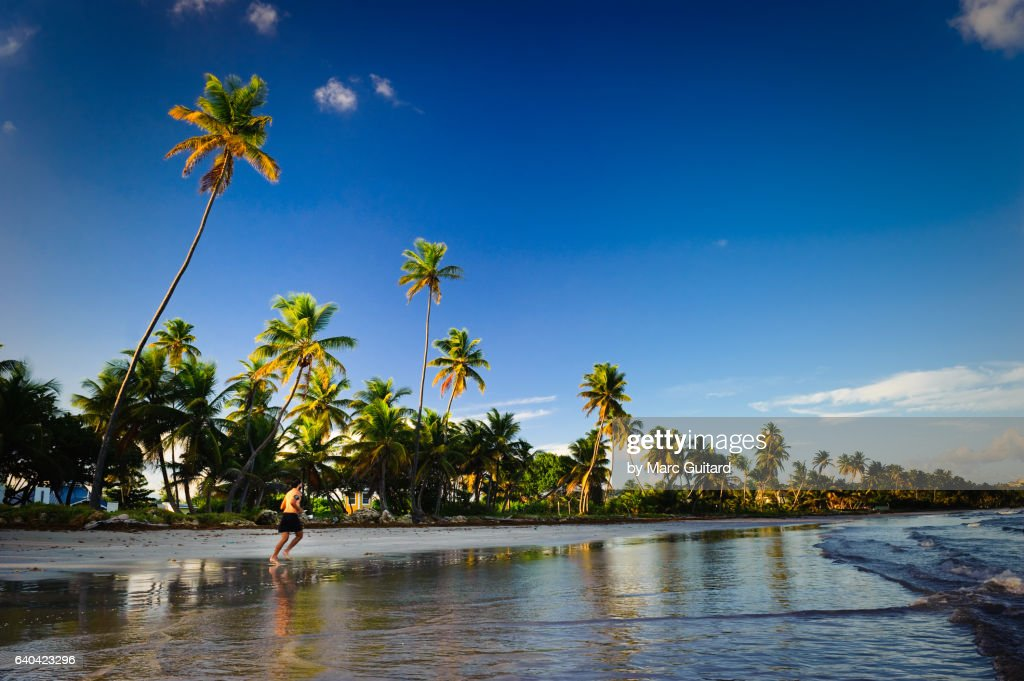 Rockly Beach, Tobago, Trinidad & Tobago : Stock Photo