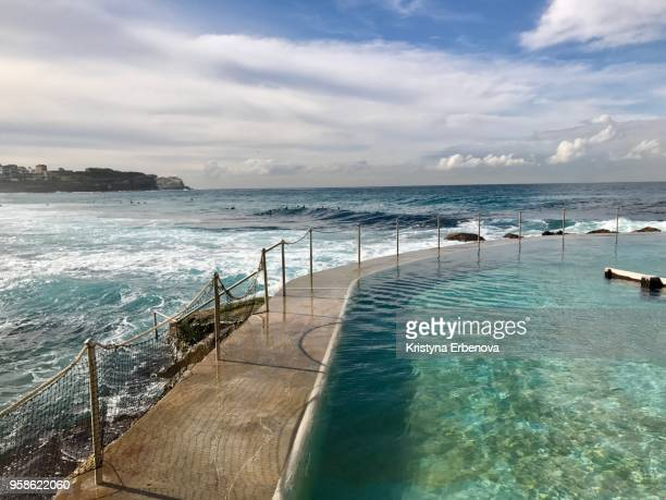 rockpool in bronte - standing water stock pictures, royalty-free photos & images