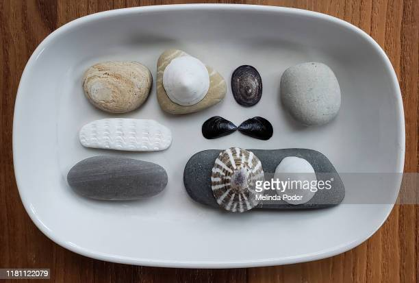 rocks and shells arranged on a small plate - limpet stock pictures, royalty-free photos & images