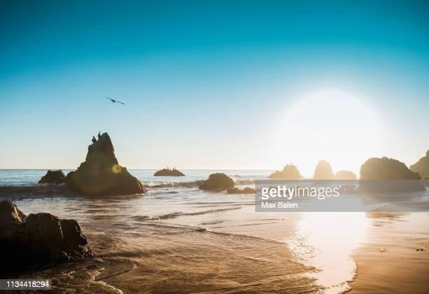 rocks at el matador beach, malibu, california, usa - malibu beach stock pictures, royalty-free photos & images