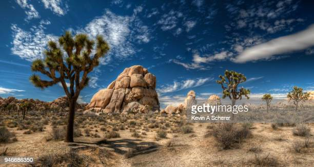 jt, rocks & clouds - joshua tree stock photos and pictures