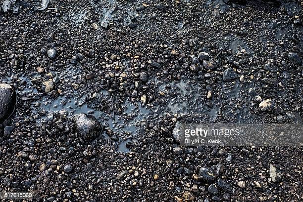 Rocks contaminated by oil are seen on the coastal area near Taiwan's north coast on March 26, 2016 in Shihmen, Taiwan. An oil slick from a container...
