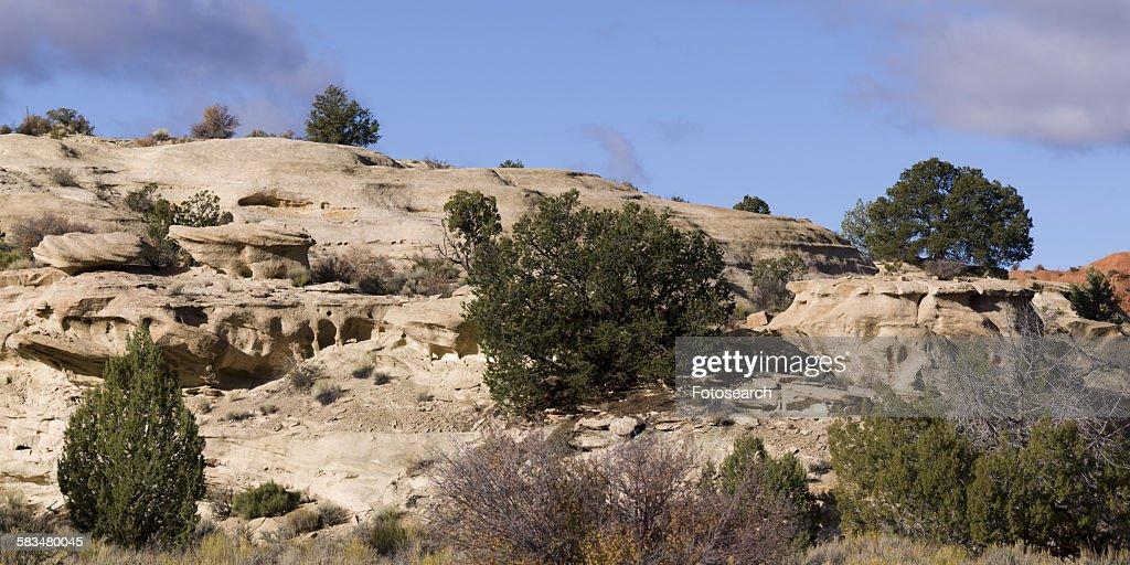 Rocks formations Paria Canyon : Stock Photo