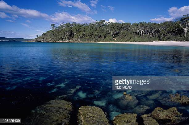 rocks in clear water, sandy beach & forest, jervis bay marine & national park, new south wales, australia