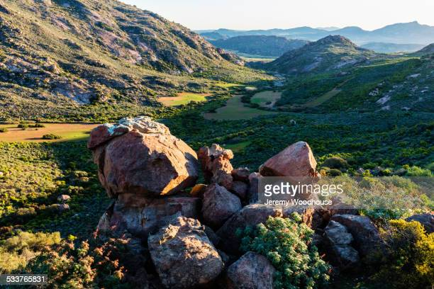 rocks in grassy field in remote landscape - ナマクワランド ストックフォトと画像