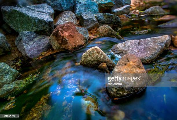 rocks in stream - rob castro stock pictures, royalty-free photos & images