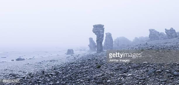 rocks on beach in fog - gotland bildbanksfoton och bilder