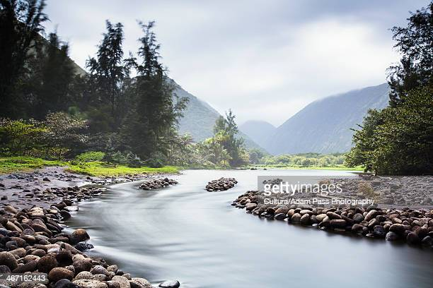 rocks on rural river bank - waipio valley stockfoto's en -beelden