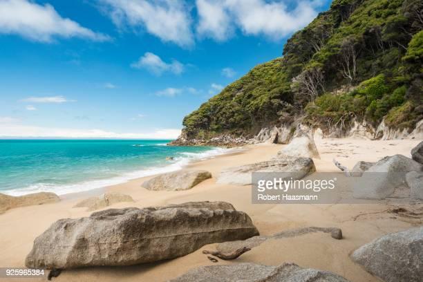 Rocks on sandy beach with tropical vegetation, Tonga Quarry, Tonga Bay, Abel Tasman National Park, Tasman Region, Southland, New Zealand