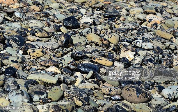 Rocks on the beach remain covered in oil at Refugio State Beach in Santa Barbara County in California on May 21 2015 The governor of California...