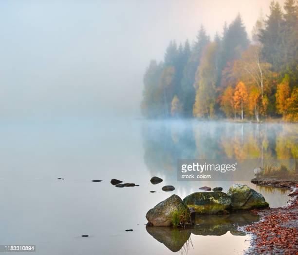 rocce sul bordo dell'acqua - bicolore colore foto e immagini stock