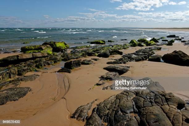 rocky beach, dornoch, caithness, sutherland, highlands, scotland, great britain - weite landschaft stock-fotos und bilder