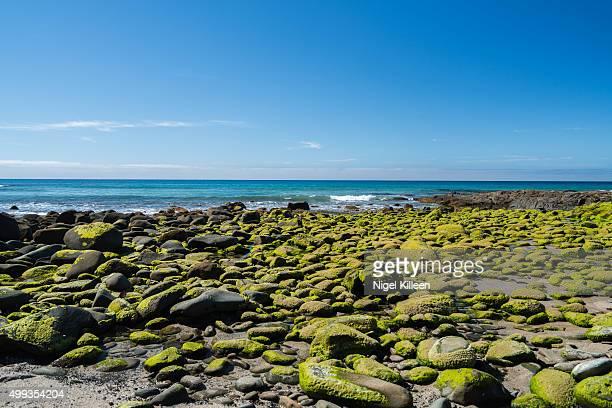 Rocky beach. Great Ocean Road