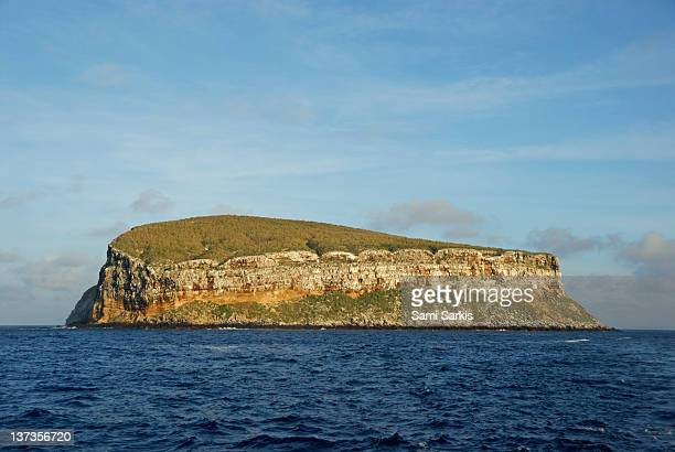 rocky cliffs of darwin island, galapagos - darwin island stock photos and pictures