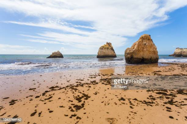 rocky cliffs on the coast of the atlantic ocean in lagos, algarve, portugal - portimao stock photos and pictures