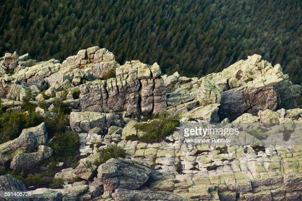 Rocky cliffs over forest treetops in remote landscape