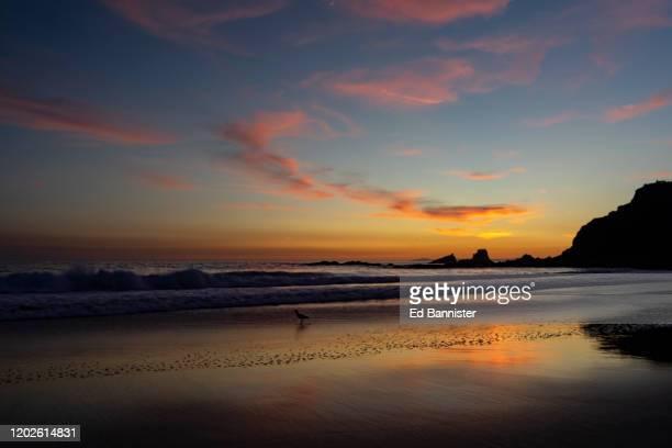 rocky coast laguna beach sunset reflection pink blue - retreating ストックフォトと画像
