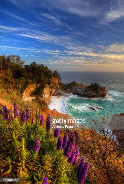 rocky coast near mcway falls, julia pfeiffer burns state park, california, usa - big sur stock pictures, royalty-free photos & images