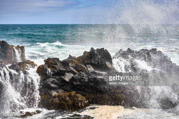 rocky coastline and waves, reykjanes peninsula, iceland - wasserrand stock-fotos und bilder