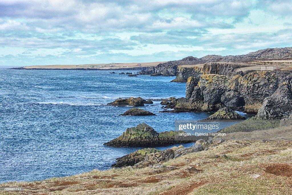 Rocky coastline at Arnarstapi, Iceland : Stock Photo