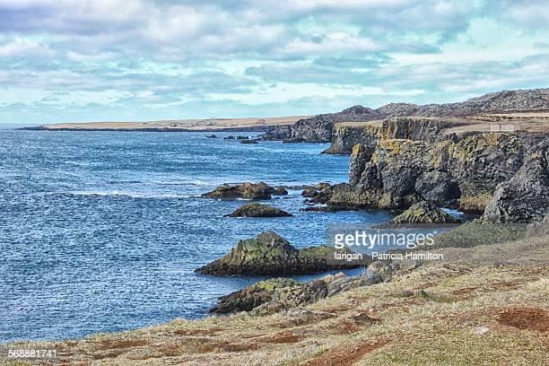 Rocky coastline at Arnarstapi, Iceland