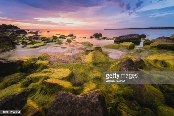 rocky coastline, klaipeda, lithuania - lithuania stock pictures, royalty-free photos & images