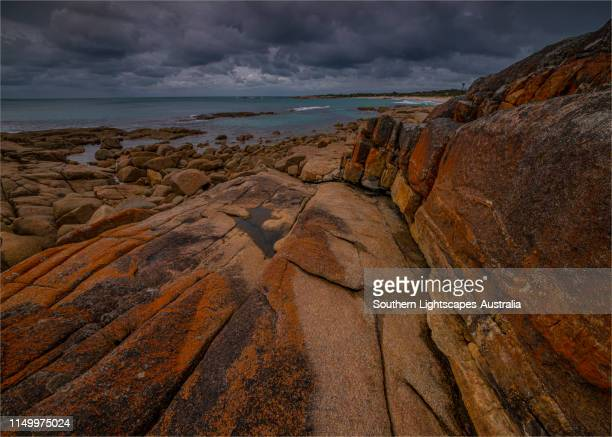 rocky coastline on the northern end of flinders island, bass strait, tasmania. - bass strait stock pictures, royalty-free photos & images