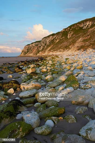 rocky coastline - heidi coppock beard stock-fotos und bilder