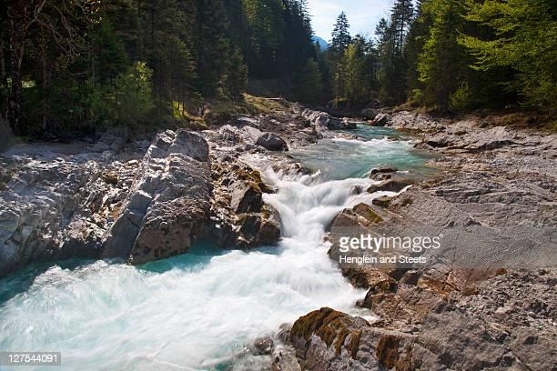 bosque de rocky creek en - agua descendente fotografías e imágenes de stock