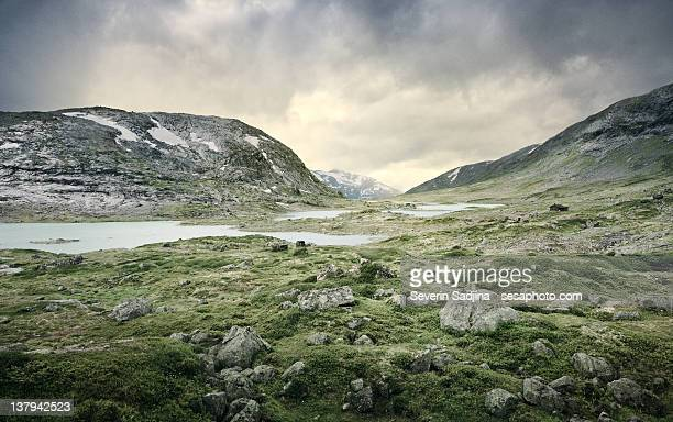 Rocky green landscape in Norway