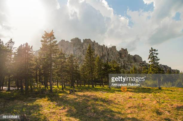 Rocky hilltop over forest in remote field