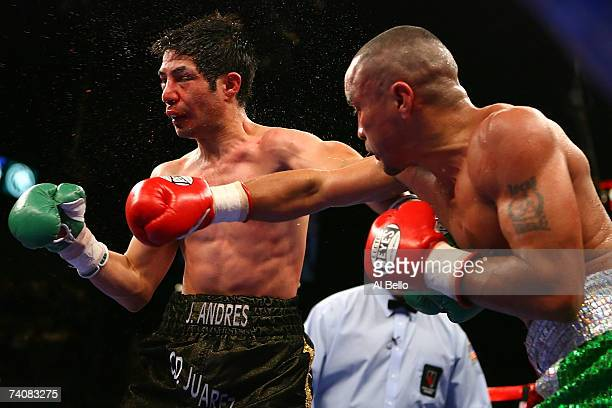 Rocky Juarez connects with a right and knocks back Jose A Hernandez during their WBA featherweight championship fight at the MGM Grand Garden Arena...
