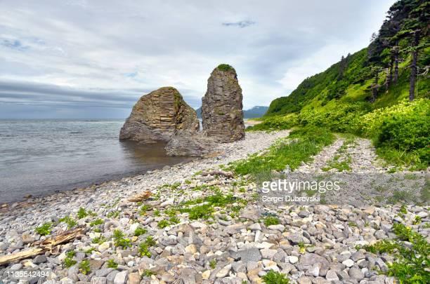 rocky mountain coast, kunashir island, cloudy gray gloomy sky. - sea of okhotsk stock pictures, royalty-free photos & images