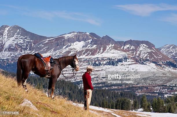 ロッキーマウンテンのカウボーイと馬
