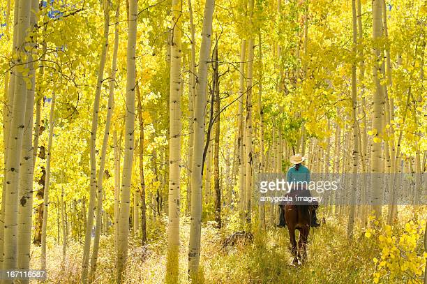 rocky mountain lifestyle - aspen colorado stock photos and pictures