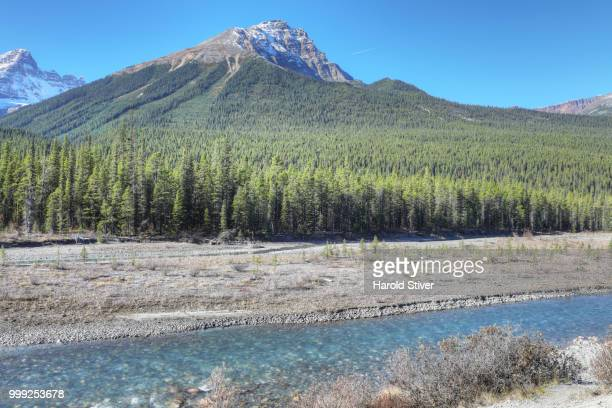 Rocky Mountains with Athabasca River in foreground