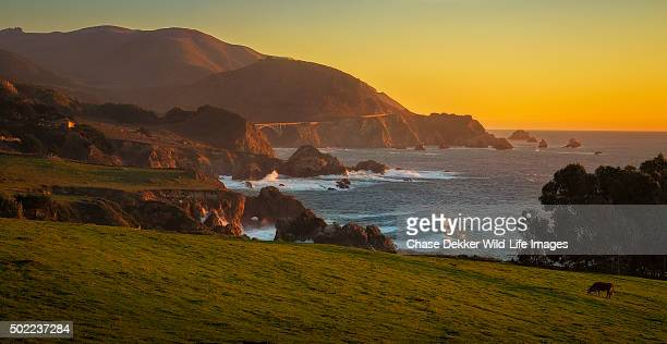 rocky point - pebble beach california stock pictures, royalty-free photos & images