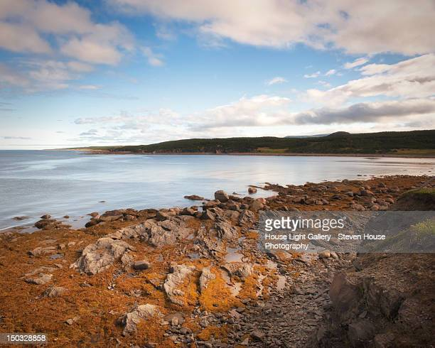 Rocky seashore at Lobster Cove Head