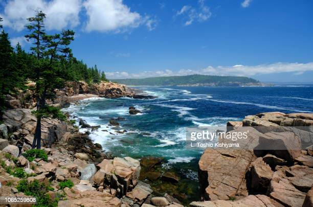 rocky shoreline at acadia national park in maine - maine stock pictures, royalty-free photos & images