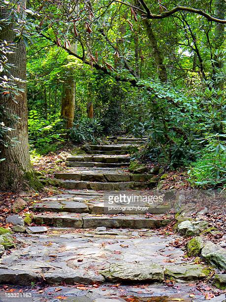 rocky steps - greenville south carolina stock photos and pictures